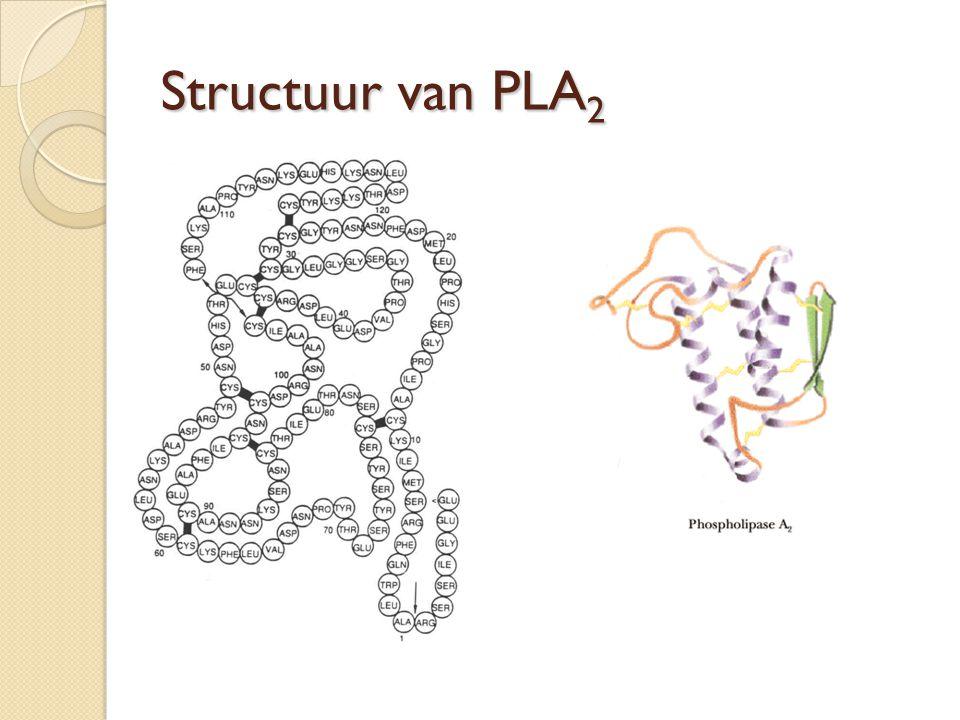 Structuur van PLA2