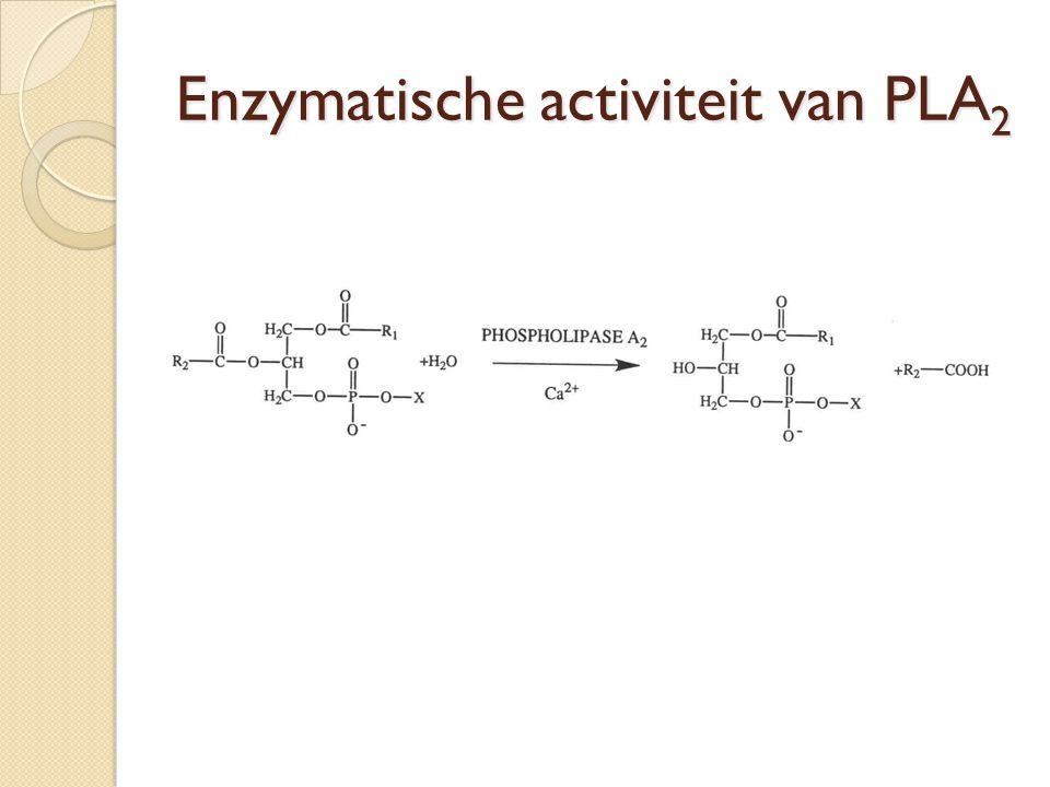 Enzymatische activiteit van PLA2