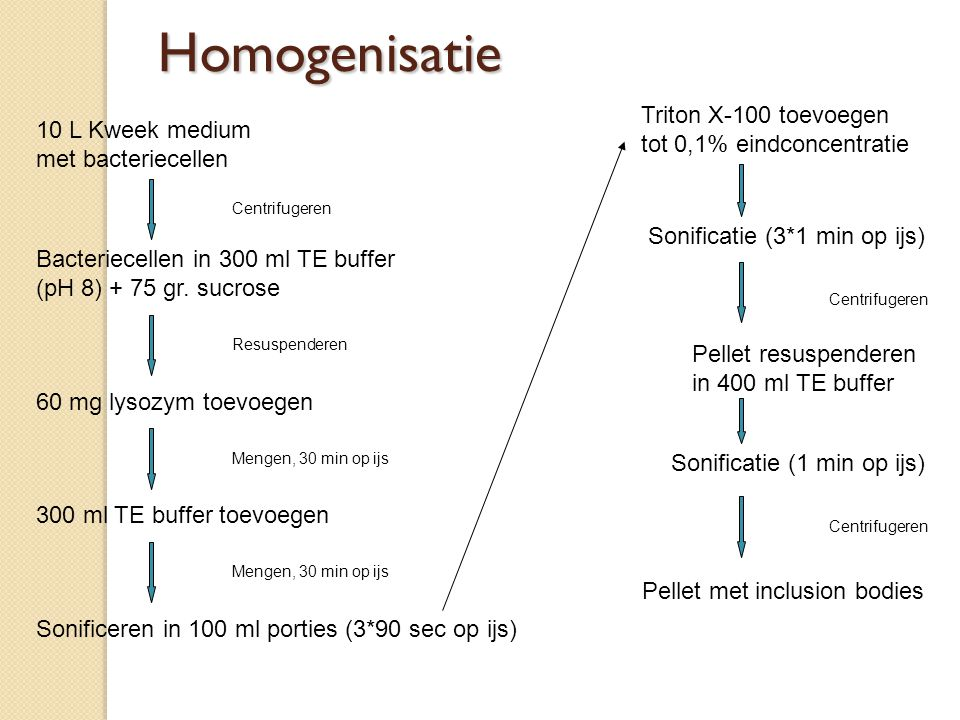 Homogenisatie Triton X-100 toevoegen tot 0,1% eindconcentratie