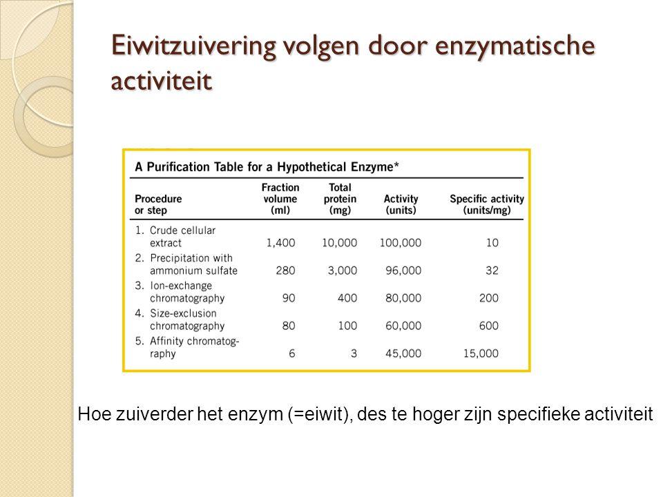 Eiwitzuivering volgen door enzymatische activiteit