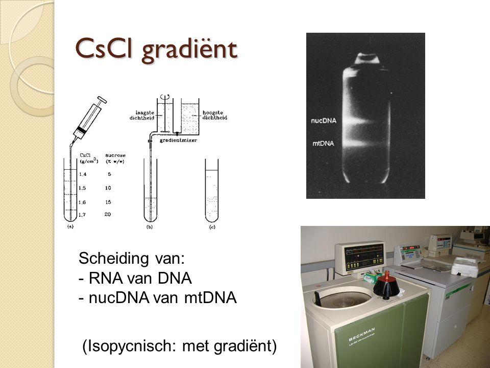 CsCl gradiënt Scheiding van: RNA van DNA nucDNA van mtDNA