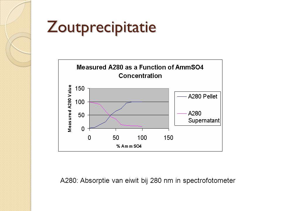 Zoutprecipitatie A280: Absorptie van eiwit bij 280 nm in spectrofotometer