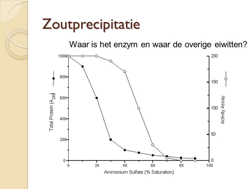 Zoutprecipitatie Waar is het enzym en waar de overige eiwitten