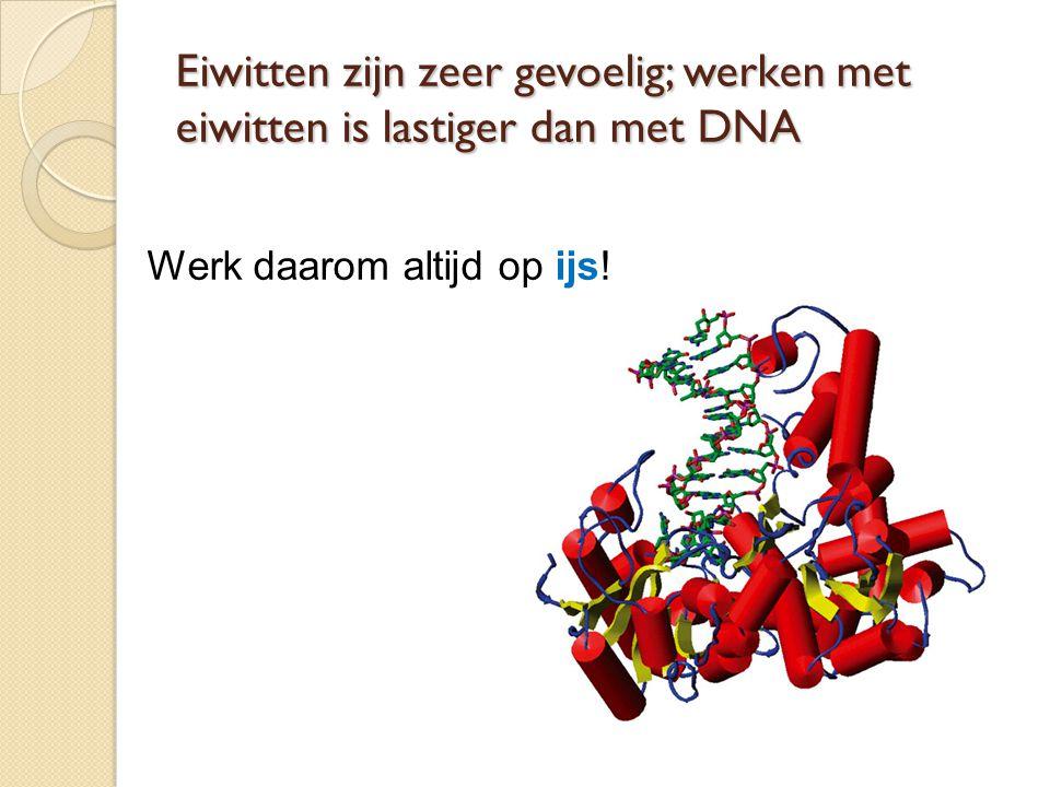 Eiwitten zijn zeer gevoelig; werken met eiwitten is lastiger dan met DNA