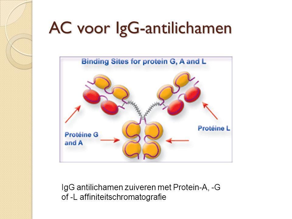 AC voor IgG-antilichamen