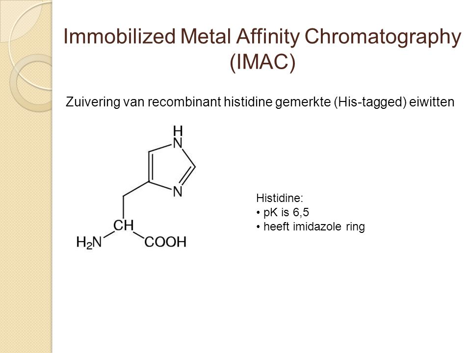 Immobilized Metal Affinity Chromatography (IMAC)