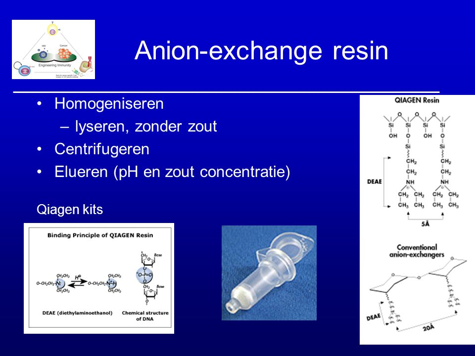 Anion-exchange resin Homogeniseren lyseren, zonder zout Centrifugeren