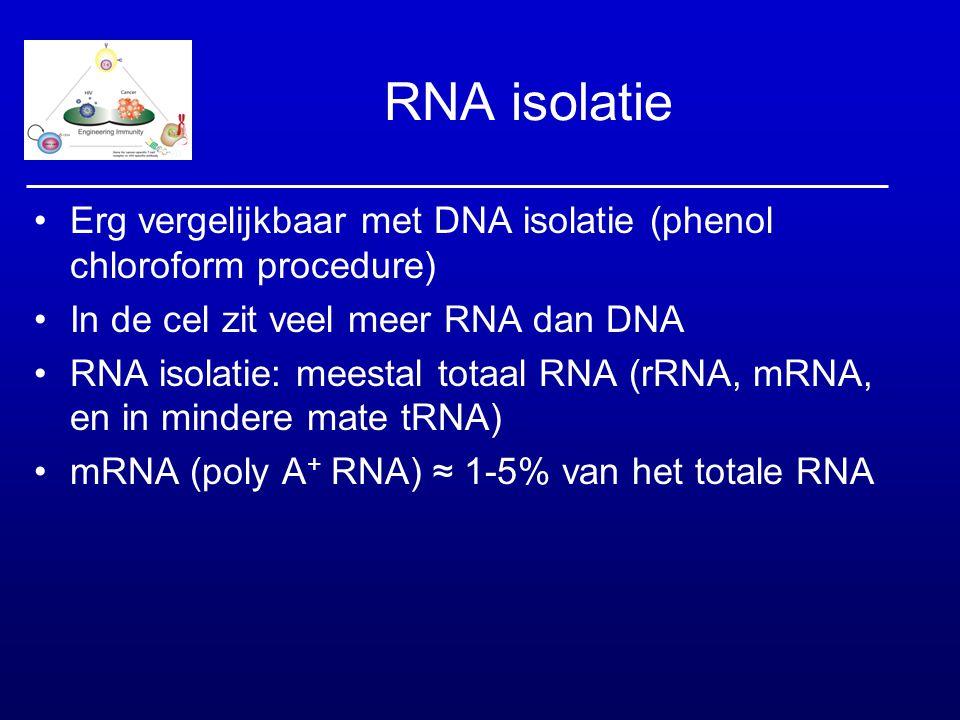 RNA isolatie Erg vergelijkbaar met DNA isolatie (phenol chloroform procedure) In de cel zit veel meer RNA dan DNA.