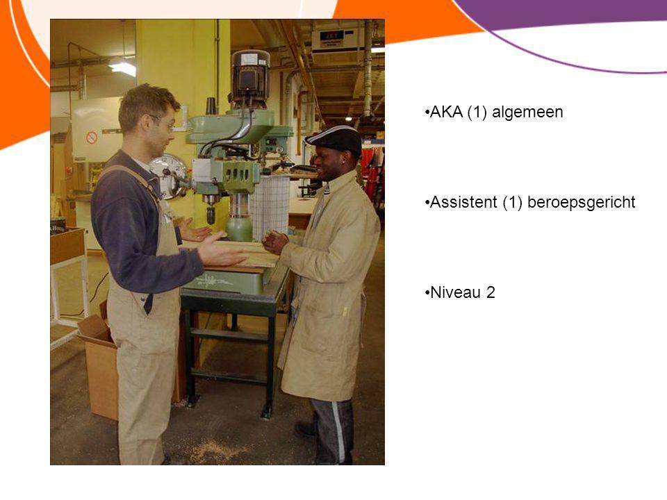 Assistent (1) beroepsgericht