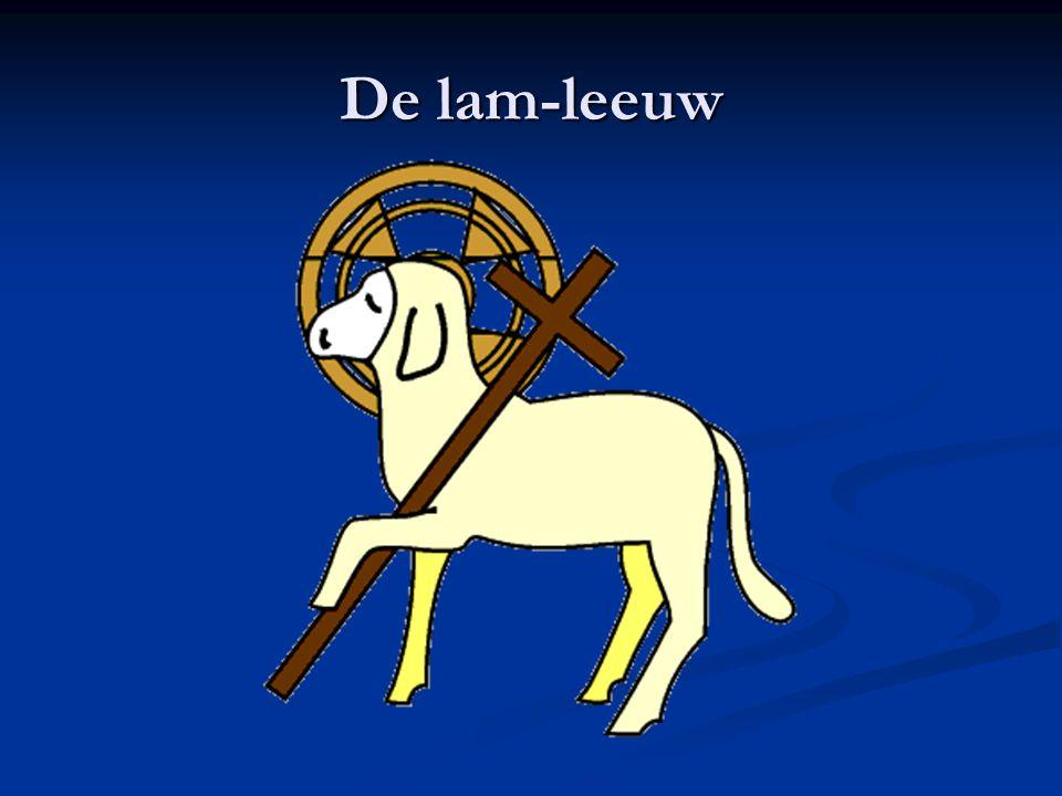 De lam-leeuw