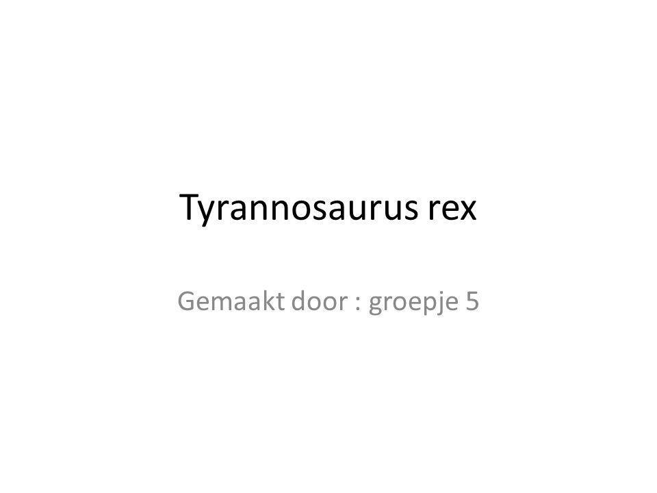 Tyrannosaurus rex Gemaakt door : groepje 5
