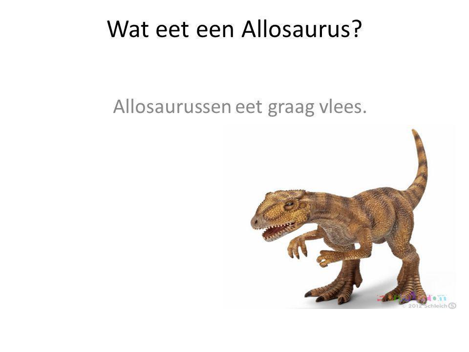 Allosaurussen eet graag vlees.