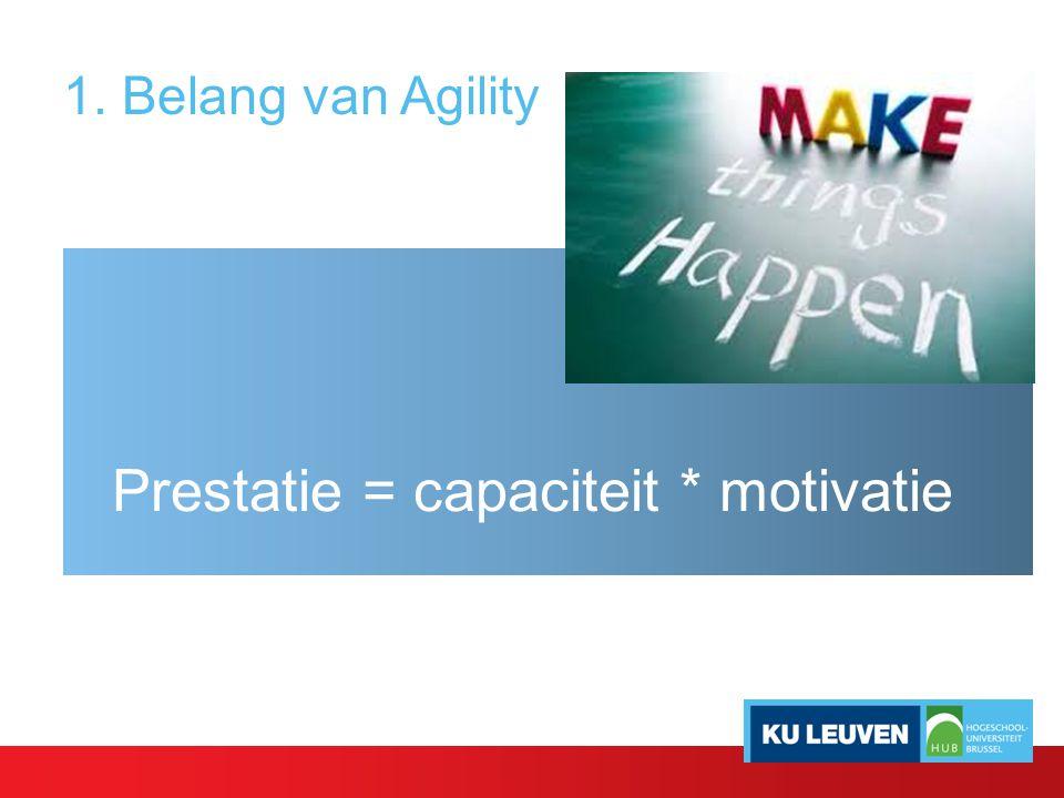 Prestatie = capaciteit * motivatie