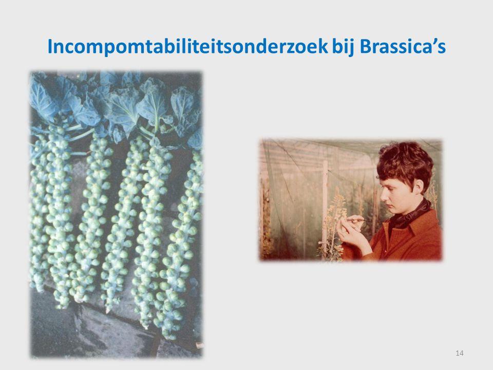 Incompomtabiliteitsonderzoek bij Brassica's