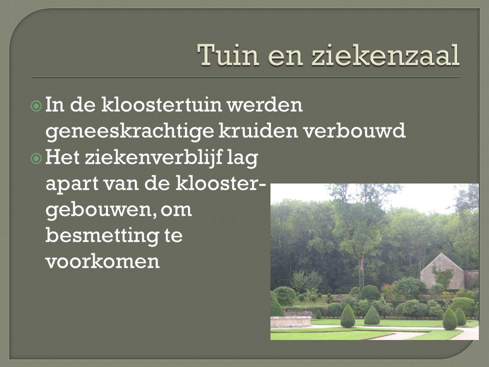 Tuin en ziekenzaal In de kloostertuin werden geneeskrachtige kruiden verbouwd.