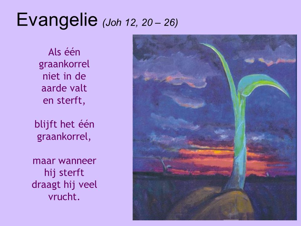 Evangelie (Joh 12, 20 – 26) Als één graankorrel niet in de aarde valt en sterft, blijft het één graankorrel,