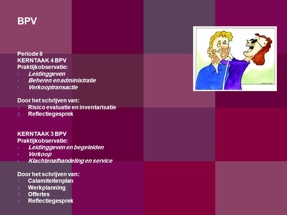 BPV Periode 8 KERNTAAK 4 BPV Praktijkobservatie: Leidinggeven