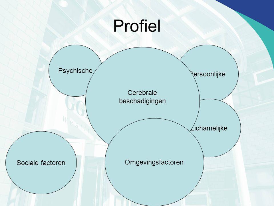 Profiel Psychische Persoonlijke Cerebrale beschadigingen Lichamelijke