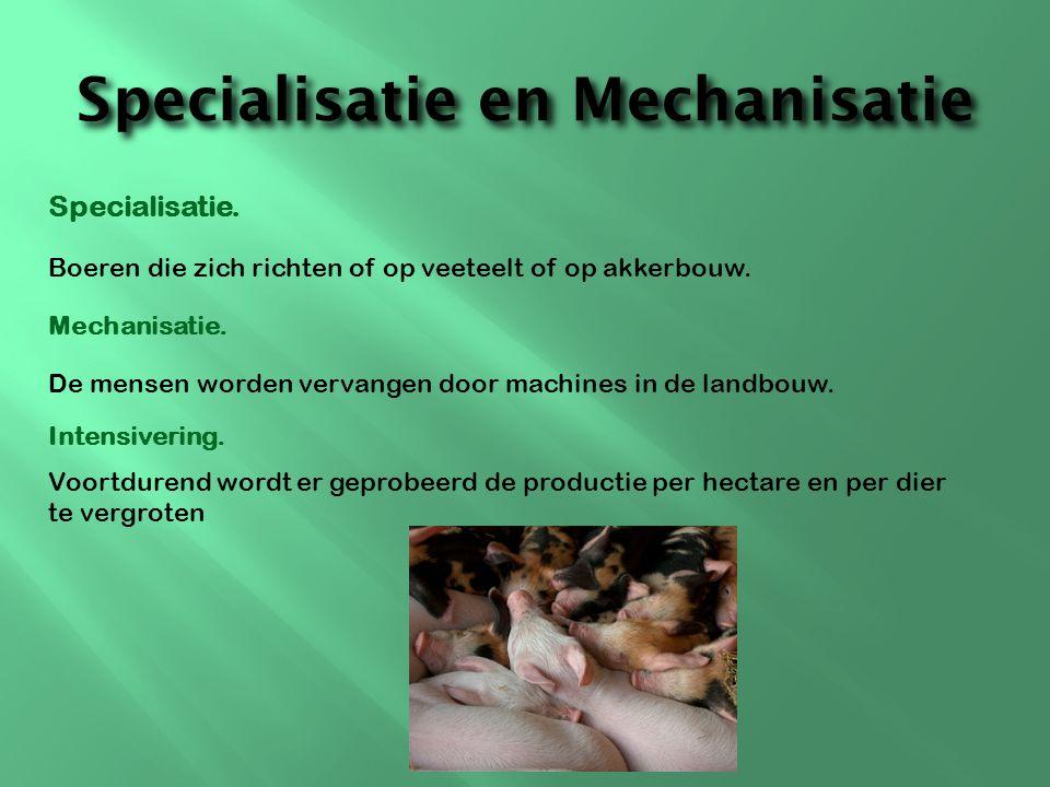 Specialisatie en Mechanisatie
