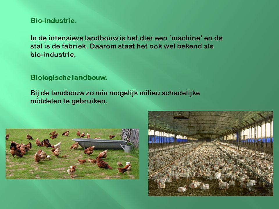Bio-industrie. In de intensieve landbouw is het dier een 'machine' en de stal is de fabriek. Daarom staat het ook wel bekend als bio-industrie.