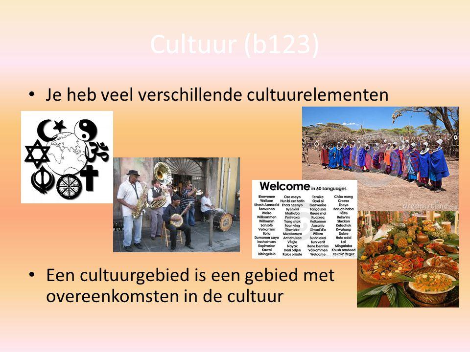 Cultuur (b123) Je heb veel verschillende cultuurelementen