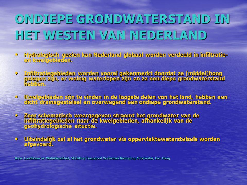 ONDIEPE GRONDWATERSTAND IN HET WESTEN VAN NEDERLAND