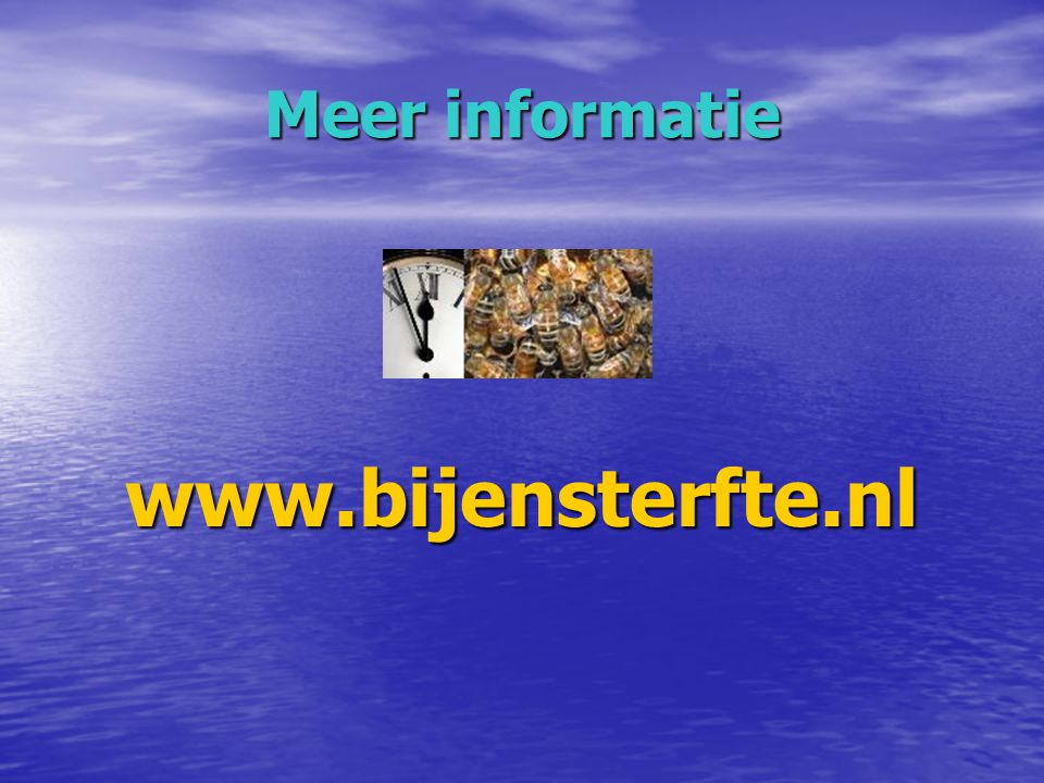 Meer informatie www.bijensterfte.nl