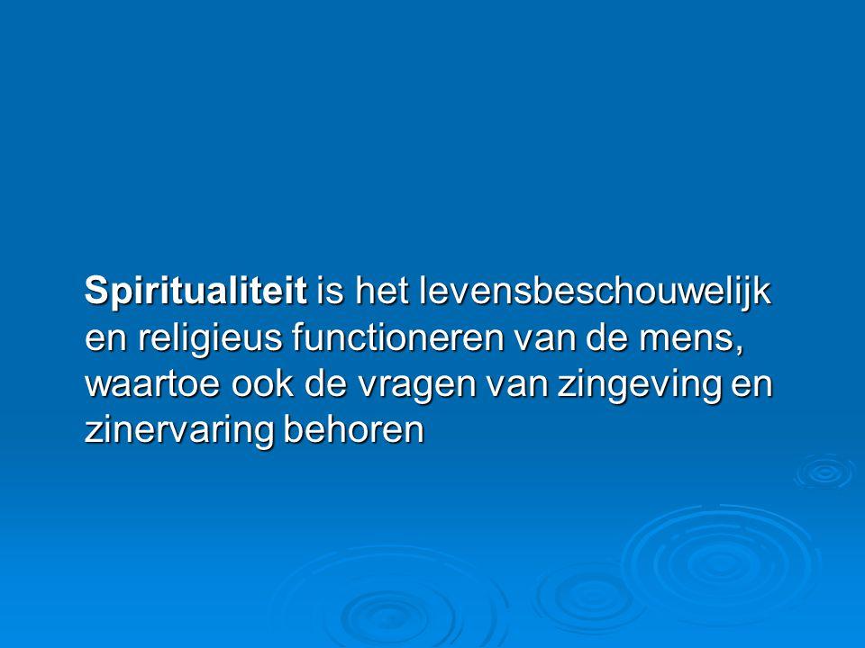 Spiritualiteit is het levensbeschouwelijk en religieus functioneren van de mens, waartoe ook de vragen van zingeving en zinervaring behoren
