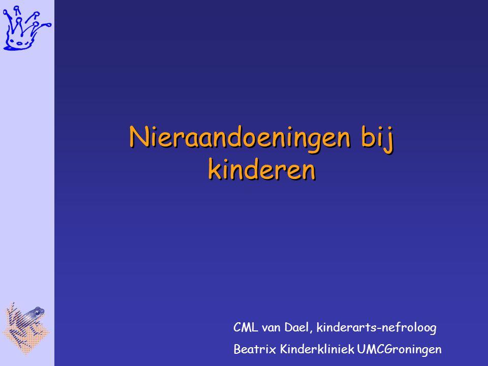 Nieraandoeningen bij kinderen