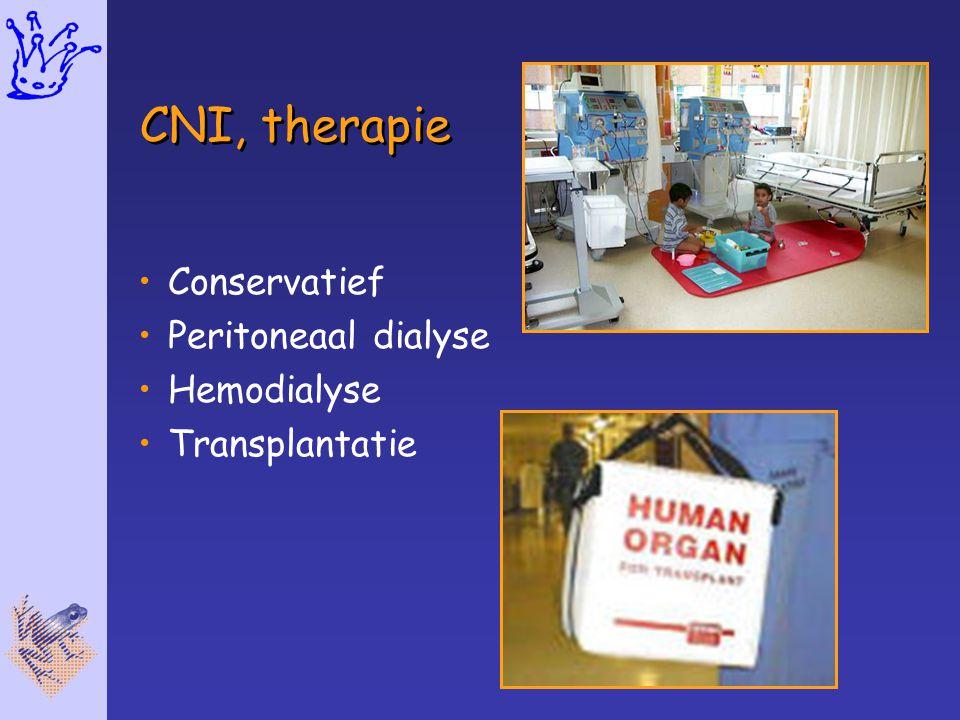 CNI, therapie Conservatief Peritoneaal dialyse Hemodialyse
