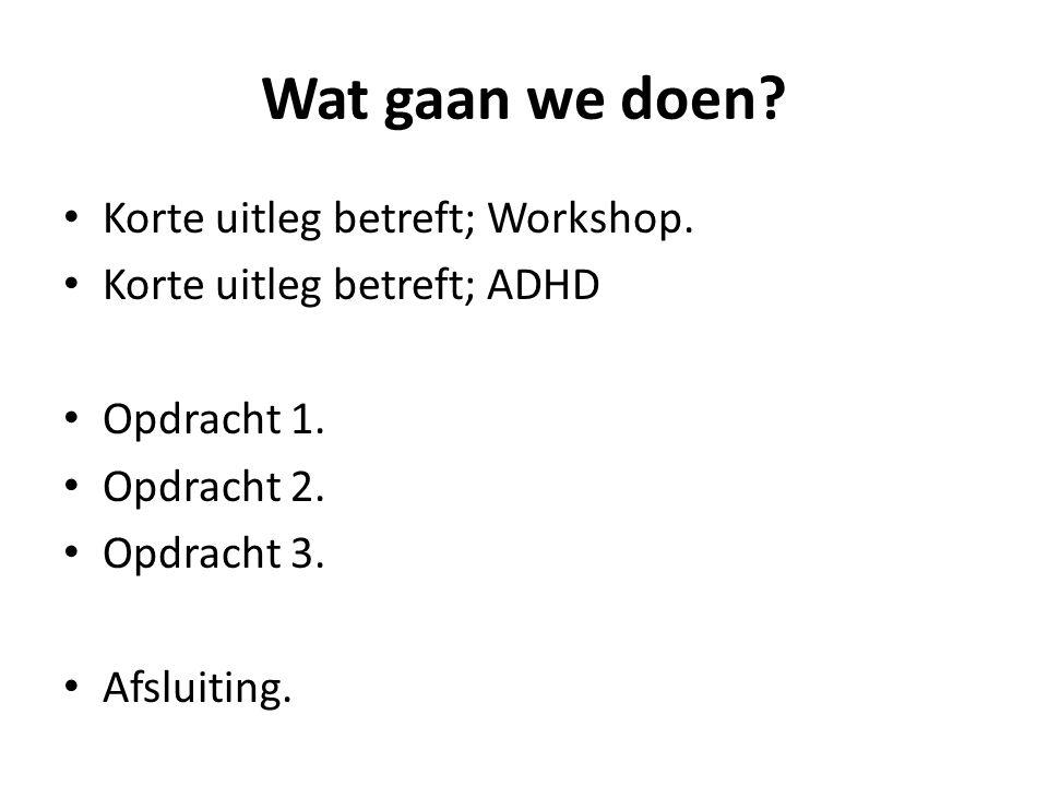 Wat gaan we doen Korte uitleg betreft; Workshop.