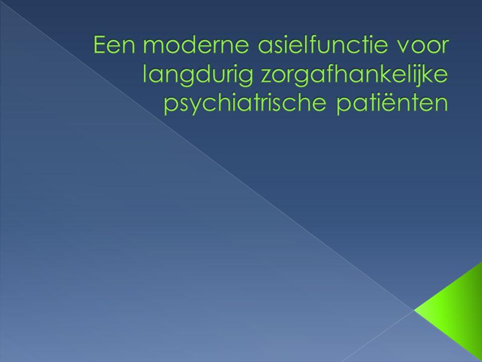Een moderne asielfunctie voor langdurig zorgafhankelijke psychiatrische patiënten