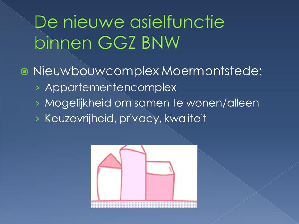 De nieuwe asielfunctie binnen GGZ BNW