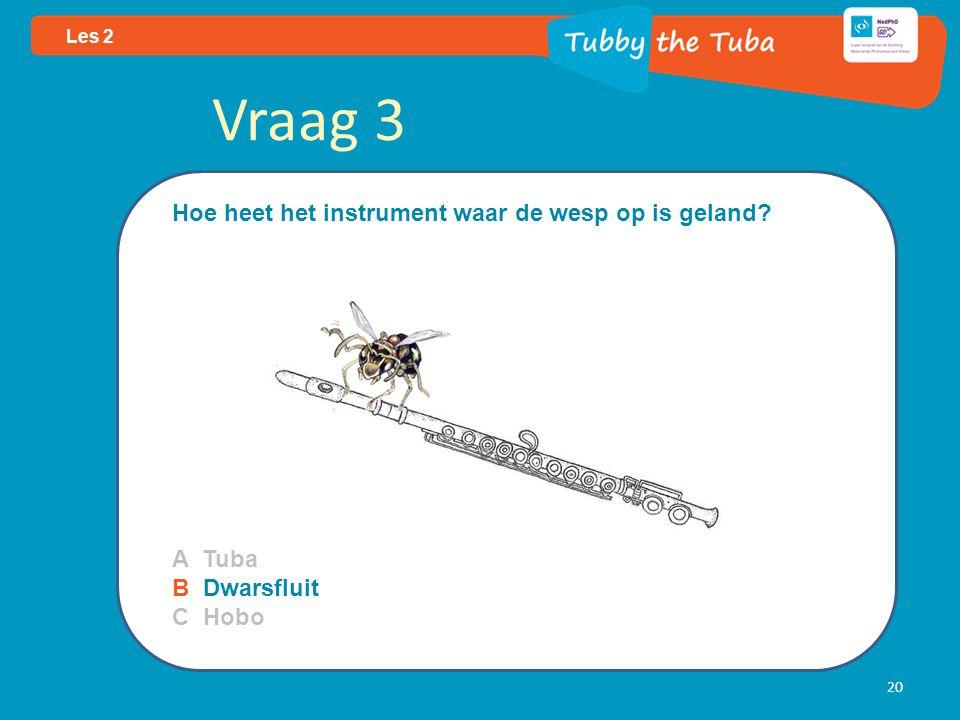 Vraag 3 Hoe heet het instrument waar de wesp op is geland