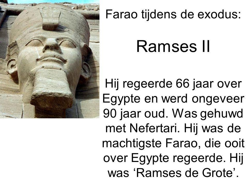 Farao tijdens de exodus: Ramses II Hij regeerde 66 jaar over Egypte en werd ongeveer 90 jaar oud.