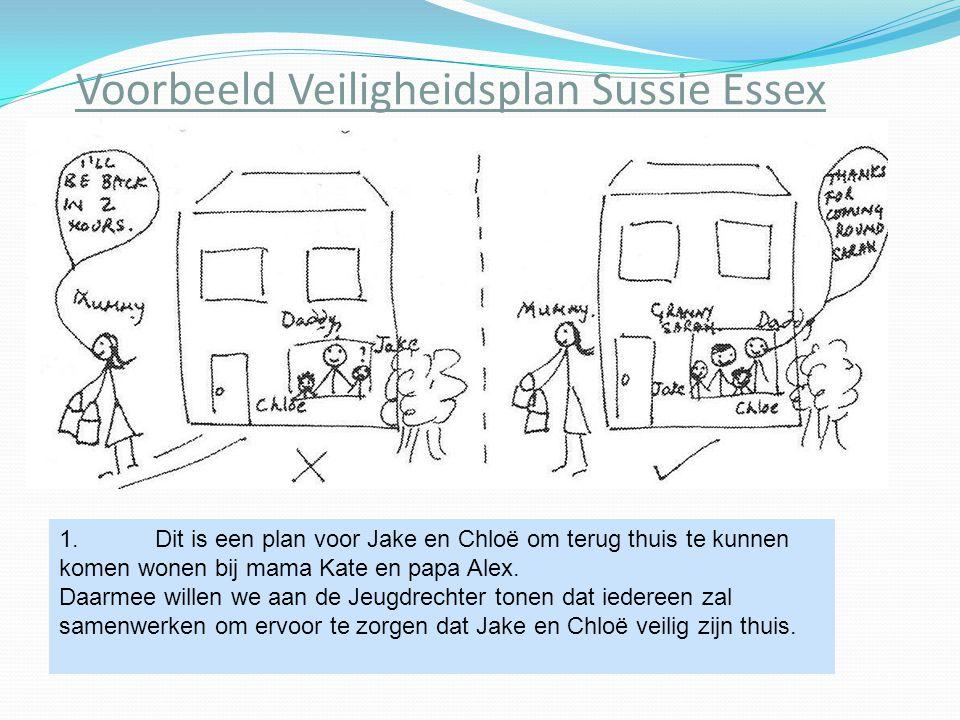 Voorbeeld Veiligheidsplan Sussie Essex