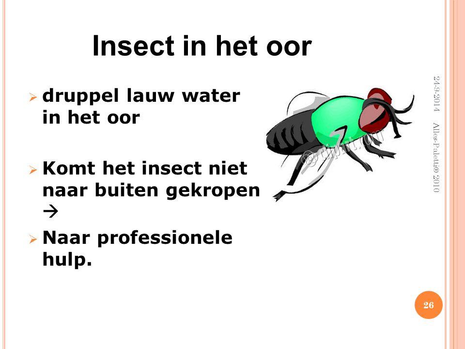 Insect in het oor druppel lauw water in het oor