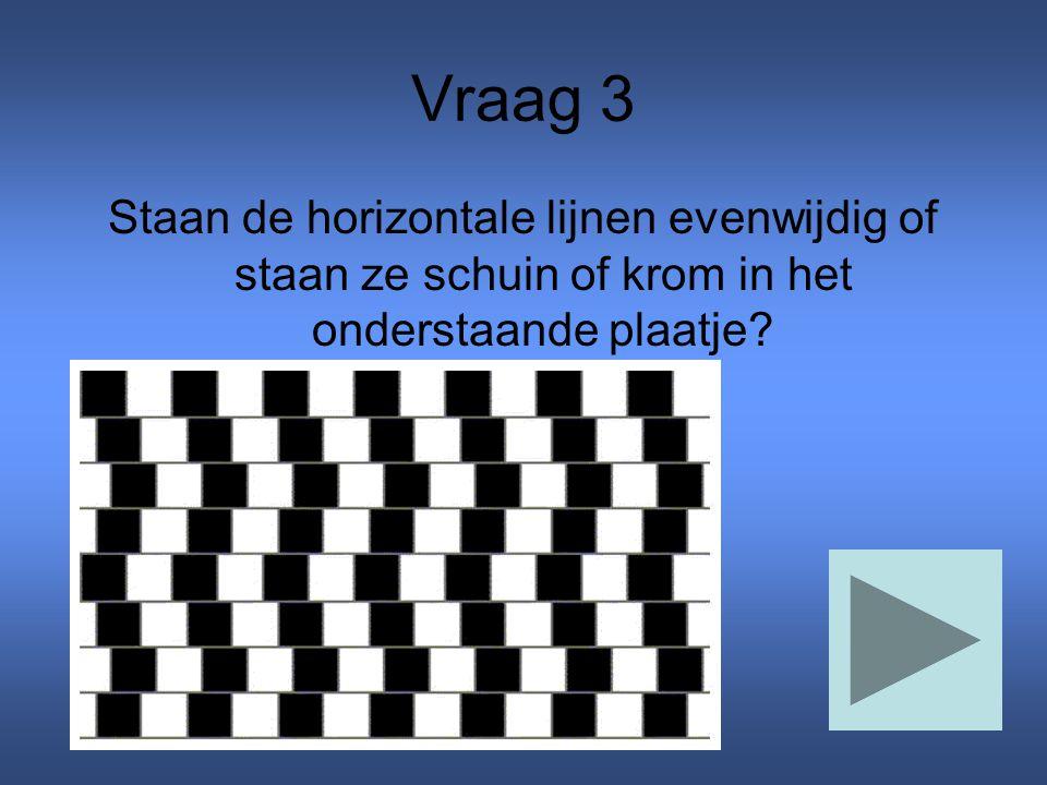 Vraag 3 Staan de horizontale lijnen evenwijdig of staan ze schuin of krom in het onderstaande plaatje