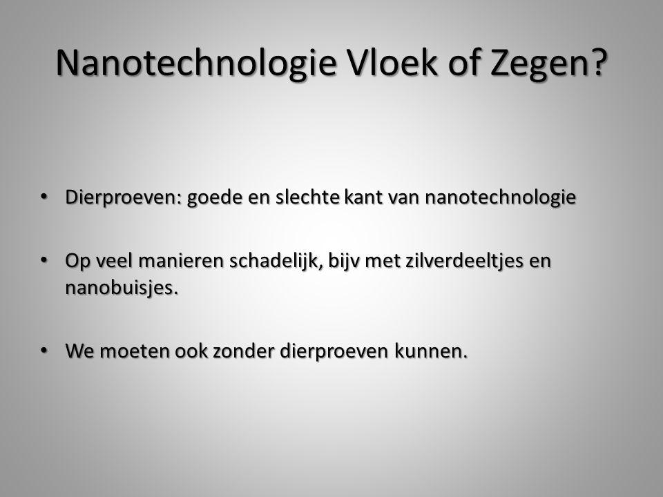 Nanotechnologie Vloek of Zegen