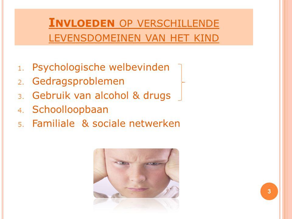 Invloeden op verschillende levensdomeinen van het kind