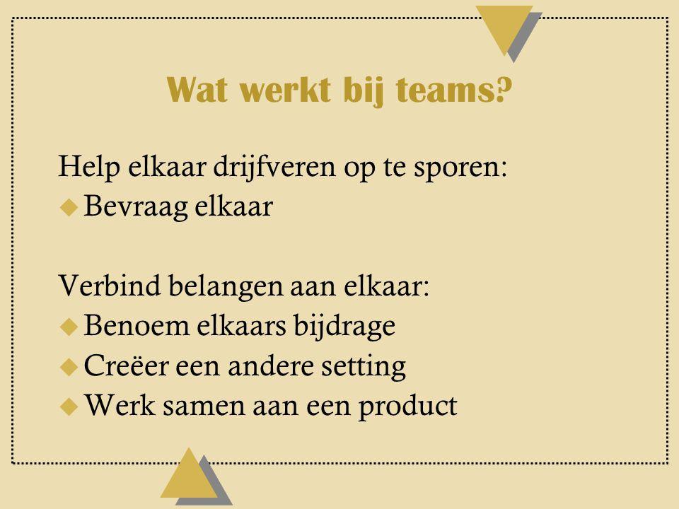 Wat werkt bij teams Help elkaar drijfveren op te sporen: