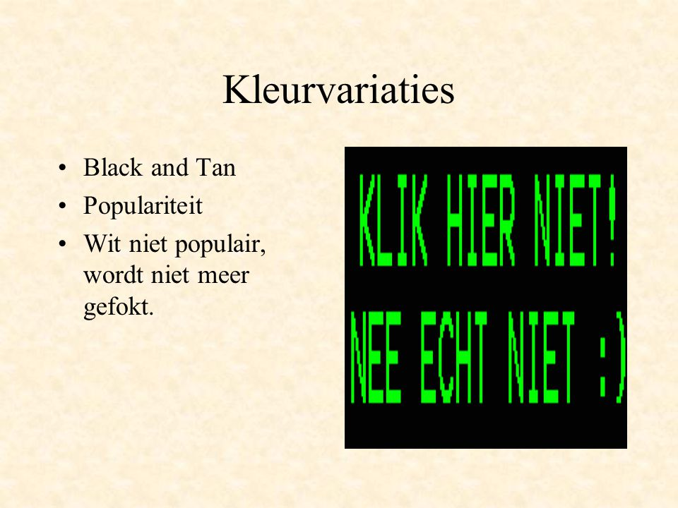 Kleurvariaties Black and Tan Populariteit