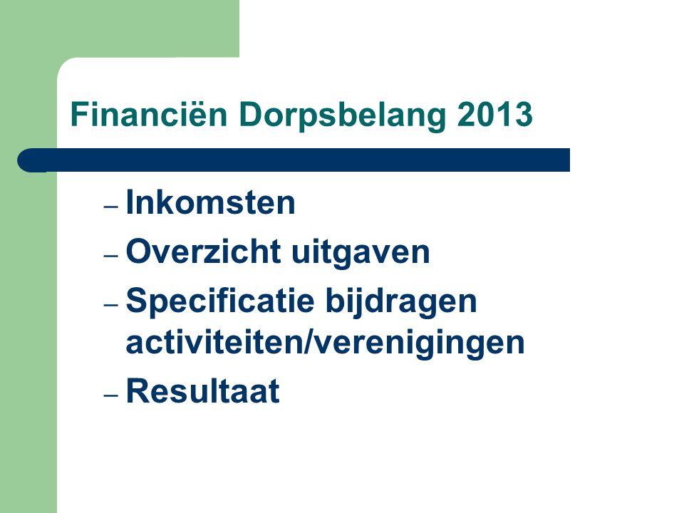 Financiën Dorpsbelang 2013