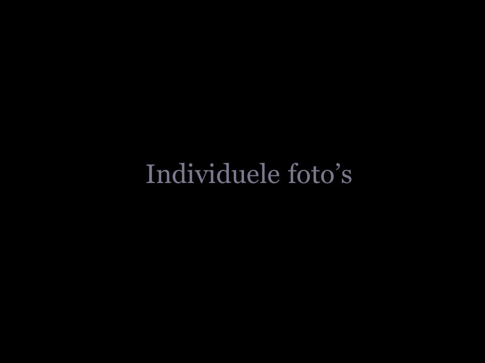 Individuele foto's