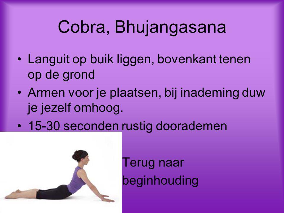 Cobra, Bhujangasana Languit op buik liggen, bovenkant tenen op de grond. Armen voor je plaatsen, bij inademing duw je jezelf omhoog.