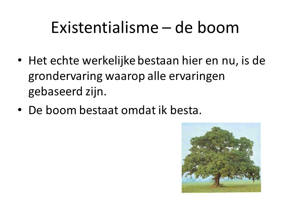 Existentialisme – de boom