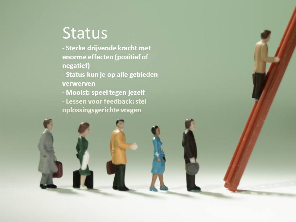 Status Sterke drijvende kracht met enorme effecten (positief of negatief) Status kun je op alle gebieden verwerven.