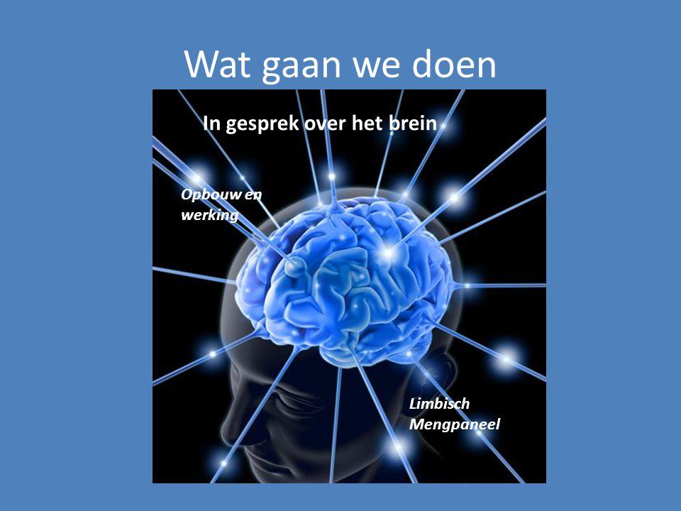 Wat gaan we doen In gesprek over het brein Opbouw en werking
