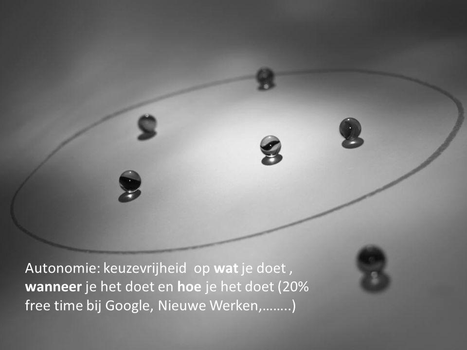 Autonomie: keuzevrijheid op wat je doet , wanneer je het doet en hoe je het doet (20% free time bij Google, Nieuwe Werken,……..)