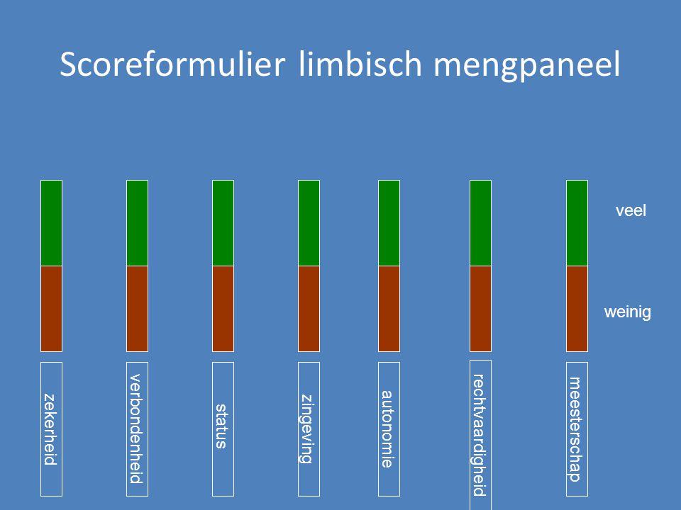 Scoreformulier limbisch mengpaneel